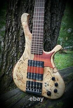 5 String bass Roger Morillo custom, Unique model hand made USA